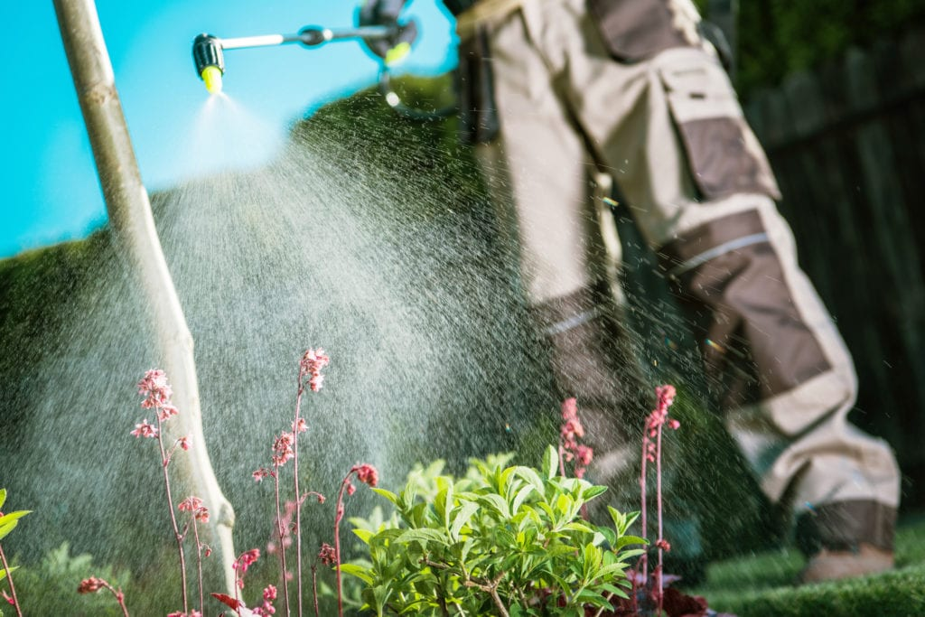 Botanical Pest Control