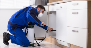 What Is The Difference Between Pest Control And Exterminator